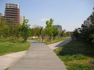 公園 (2)
