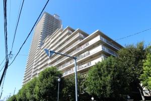 パークシティセントラルタワー  (3)