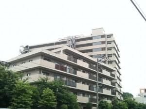 大宮区大成町3-396-2 大宮パークホームズ3階 (3)